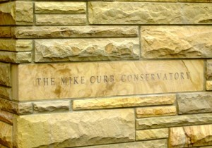 mike-curb-conservatory