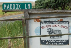don-maddox-ranch-angus