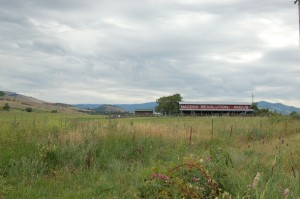 maddox-revolutionary-cattle-barn-2