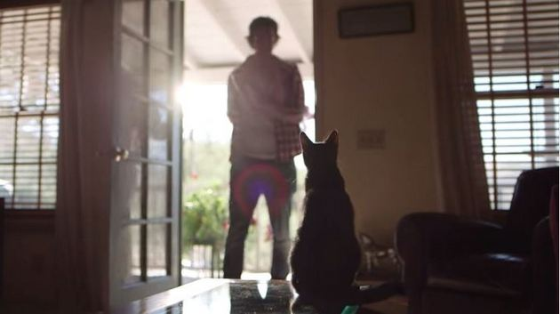 A Meow Mix Commercial Speaks To Bro-Country's Critical Mass