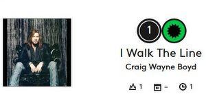 craig-wayne-boyd-johnny-cash-walk-the-line