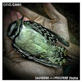 otis-gibbs-souvenirs-of-a-misspent-youth