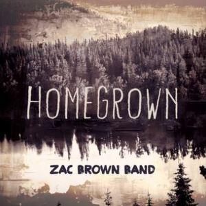 Song Review Zac Brown Band S Homegrown Saving