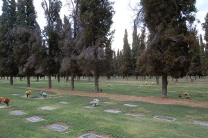 waylon-jennings-grave-2