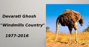 devarati-ghosh-windmills-country
