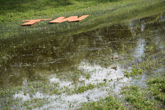 Wet Start to Tumbleweed 2017