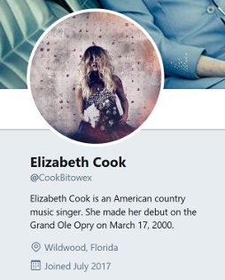 One of multiple fake Elizabeth Cook accounts